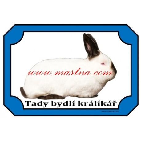 Cedulka králík kalifornský