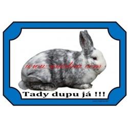 Cedulka králík rhönský