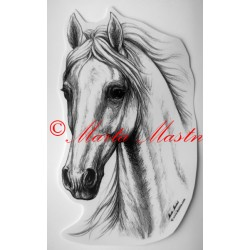 Samolepka kůň, samolepky koně