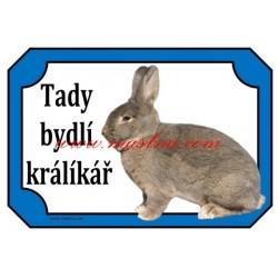 Cedulka králík vídeňský modrošedý