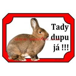 Cedulka králík vídeňský šedý