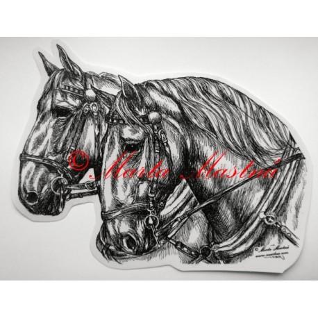 Samolepka kůň kladrubský