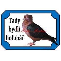 Cedulka holub hýl