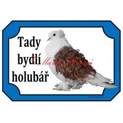 Cedulka holub kudrnáč