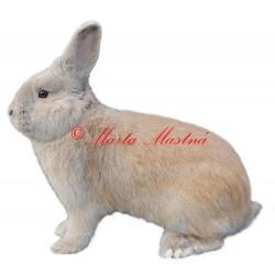 Samolepka králík český luštič