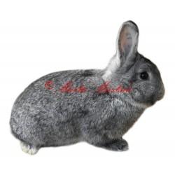 Samolepka králík činčila malá