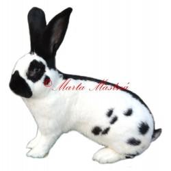 Samolepka králík německý obrovitý strakáč