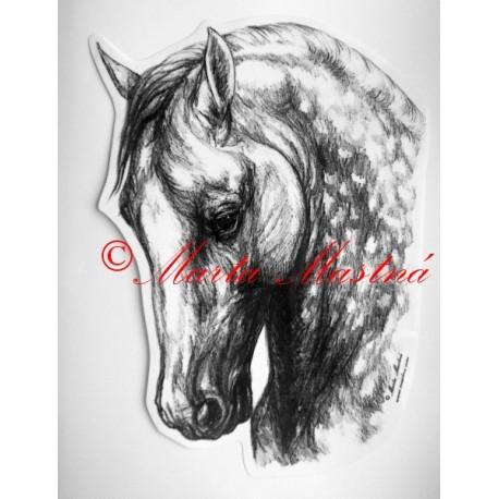 Samolepka kůň andaluzan, pura raza espaňola