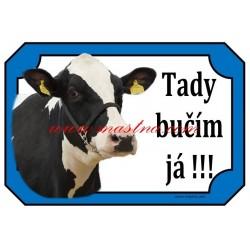 Cedulka kráva holštýn, skot
