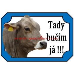 Cedulka kráva brown swiss, švýcký skot