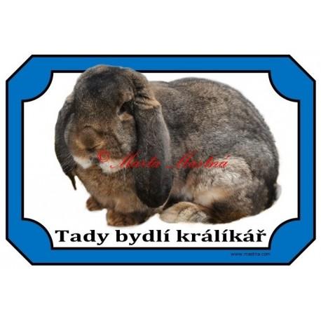 Cedulka králík francouzský beran