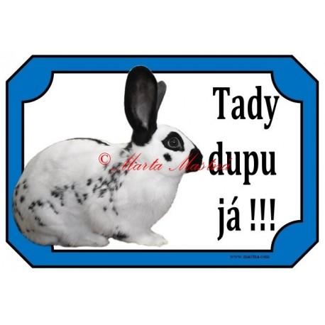 Cedulka králík anglický strakáč