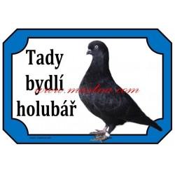 Cedulka holub výstavní tipler