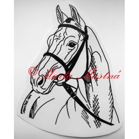 Samolepka kůň teplokrevník