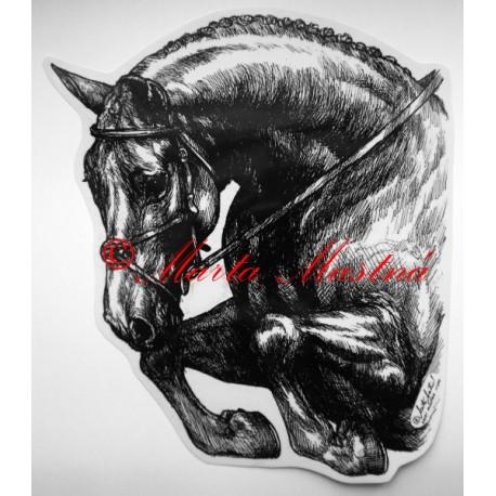 Samolepka kůň teplokrevník, parkur