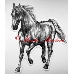Samolepka kůň, koně