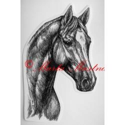 Samolepka kůň teplokrevník, trakén, koně