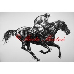 Samolepka kůň plnokrevník, dostihy, koně