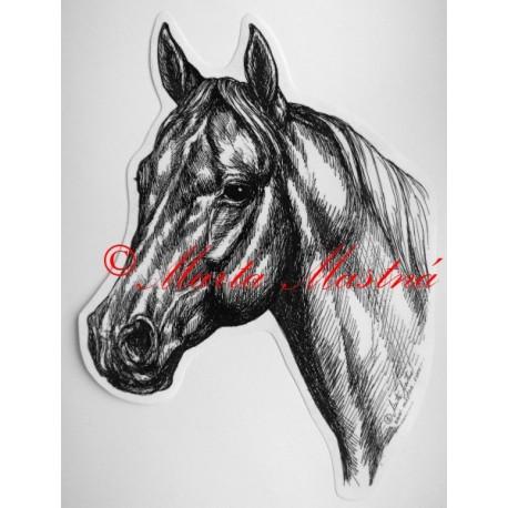 Samolepka kůň plnokrevník