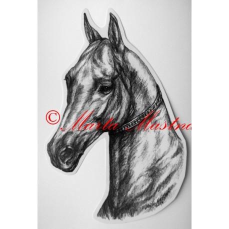 Samolepka kůň turkmenský, achal-teke, achaltekinec