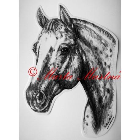 Samolepka kůň appaloosa, western