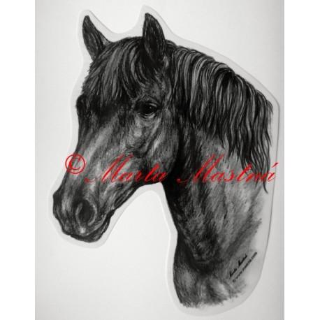 Samolepka kůň hucul, pony