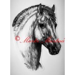 Samolepka fjord, pony, kůň, koně