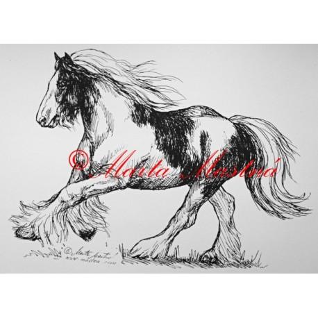 Samolepka kůň irský cob, tinker