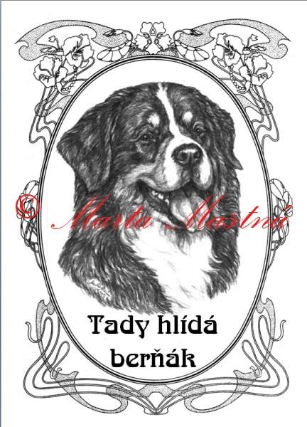 Tabulka Bernsky Salasnicky Pes