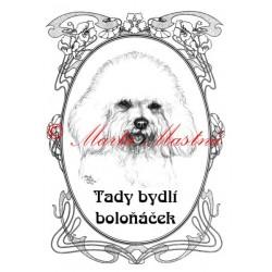 Tabulka boloňský psík