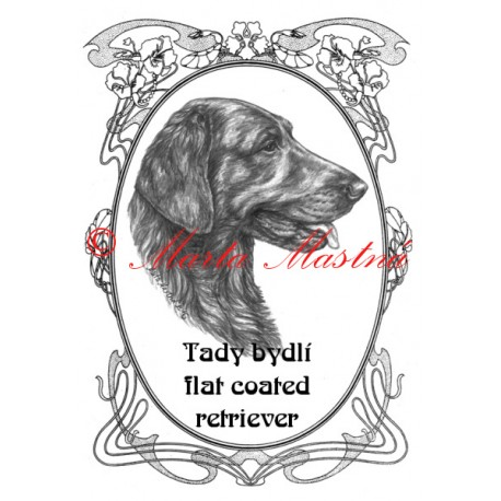 Tabulka flat coated retriever