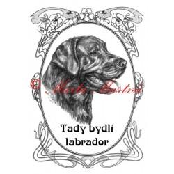 Tabulka labradorský retrívr