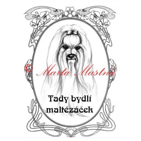 Tabulka maltézský psík