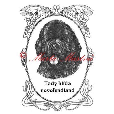 Tabulka novofundlandský pes