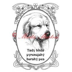 Tabulka pyrenejský horský pes