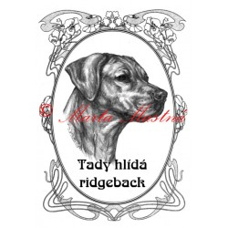 Tabulka rhodéský ridgeback, ridžbek