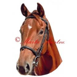 Samolepka anglický plnokrevník, teplokrevník, kůň, koně