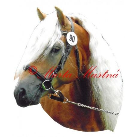 Samolepka kůň hafling Aquavit