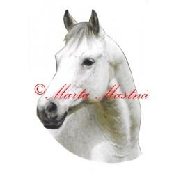 Samolepka kůň Jack, koně