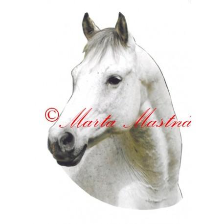 Samolepka kůň bělouš Jack
