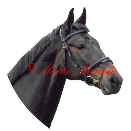 Samolepka kůň teplokrevník , hnědák