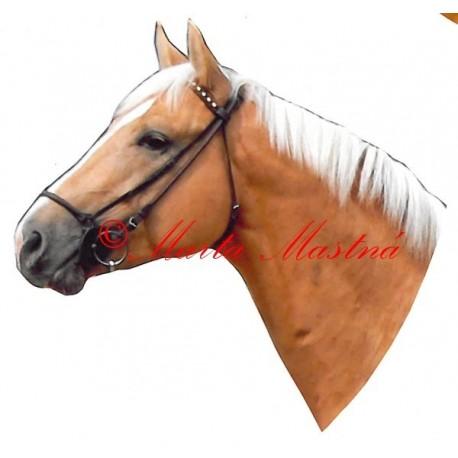 Samolepka kůň teplokrevník, Kinský