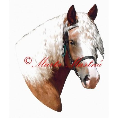 Samolepka kůň českomoravský belgik Azlina