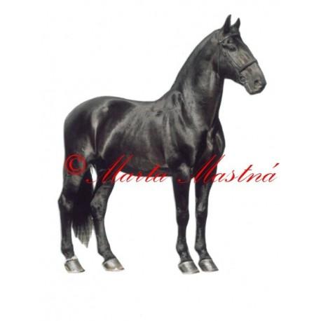Samolepka kůň starokladrubský vraník