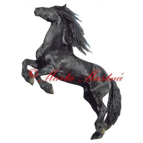 Samolepka kůň fríský