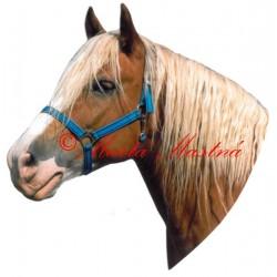 Samolepka hafling Honza, kůň, koně