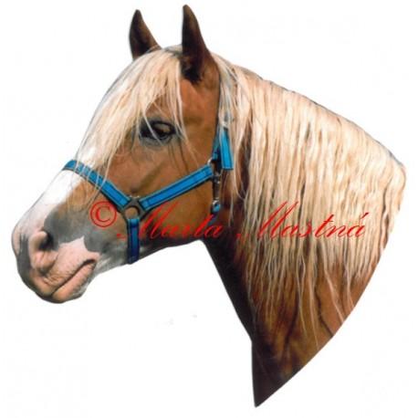 Samolepka kůň hafling Honza