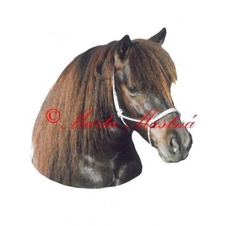 Samolepka shetlandský pony Pompo