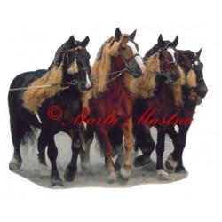 Samolepka chladnokrevní hřebci Písek, kůň, koně