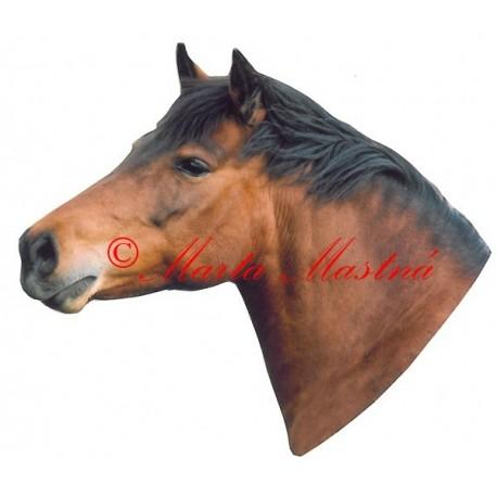Samolepka kůň hucul Hvězda